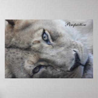 Löwe-Perspektiven-Plakat
