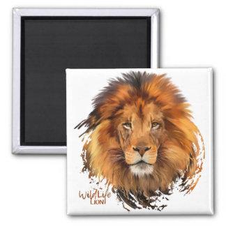 Löwe Quadratischer Magnet