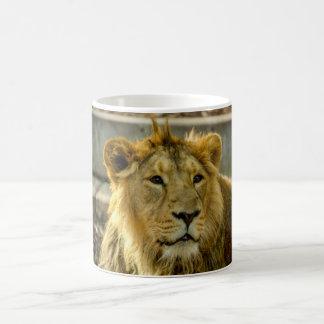 Löwe-Tasse Kaffeetasse