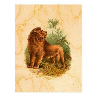 Löwe-und Palmen Vintag Postkarten
