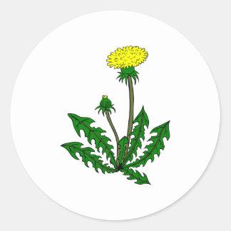 Löwenzahn dandelion runder aufkleber