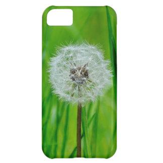 Löwenzahn im Gras - iPhone 5 Fall iPhone 5C Hülle
