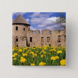 Löwenzahneinfassung Cesis Schloss in der Zentrale Quadratischer Button 5,1 Cm