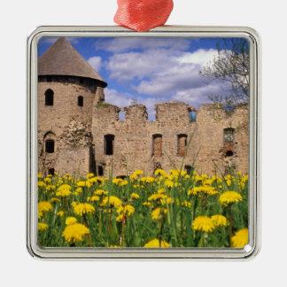 Löwenzahneinfassung Cesis Schloss in der Zentrale Quadratisches Silberfarbenes Ornament