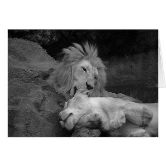 Löwepflegen Löwin (Tierwelt 1) Karte