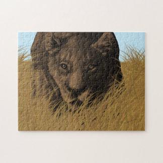Löwin-Jagd im Gras-Puzzlespiel Puzzle