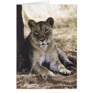 Löwin Karte