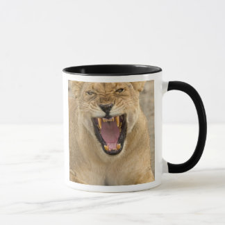 Löwin-Knäuel B, Ostafrika, Tansania, Tasse