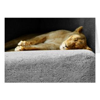 Löwin-Schlafengruß-Karte Karte