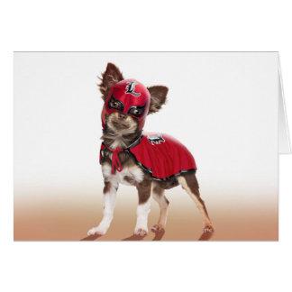 Lucha libre Hund, lustige Chihuahua, Chihuahua Karte