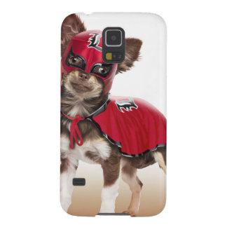 Lucha libre Hund, lustige Chihuahua, Chihuahua Samsung Galaxy S5 Cover
