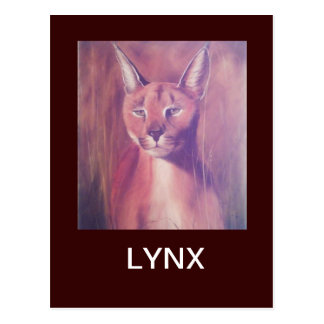 Luchs Postkarte