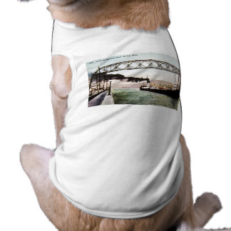 Luftbrücke und Kanal, Duluth, Minnesota T-Shirt