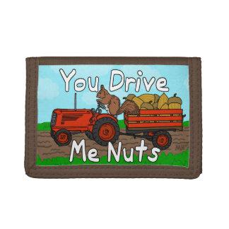 Lustig fahren Sie mich Nuts Eichhörnchen-Wortspiel