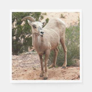 Lustige Bighorn-Schafe an Zion Nationalpark Serviette