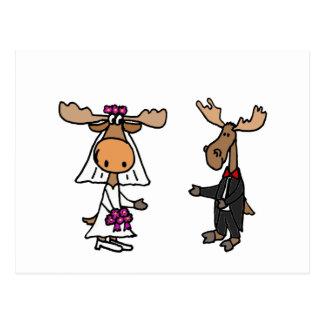 Lustige Braut-und Bräutigam-Elch-Hochzeit Postkarte