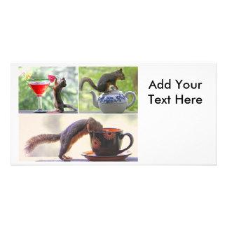 Lustige Eichhörnchen-Bild-Collage Bild Karte