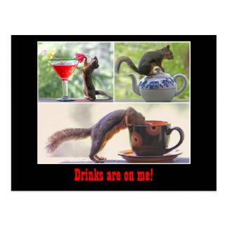 Lustige Eichhörnchen-Postkarte