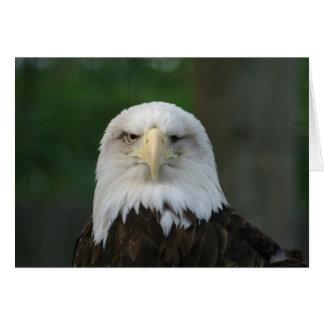 Lustige einäugige amerikanische Weißkopfseeadler-G Grußkarte