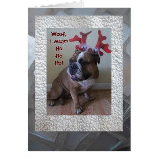 Lustige englische Bulldogge Weihnachtskarte! Mitteilungskarte