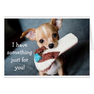 Lustige entzückende Chihuahuahundegeburtstagskarte Mitteilungskarte