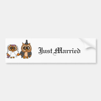 Lustige Eulen-Braut-und Bräutigam-Hochzeit Autoaufkleber