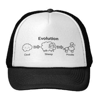 Lustige Evolution der Wolke in Schafe und in Pudel Kultcaps
