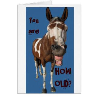 Lustige gähnende Pferdegeburtstagskarte - Sie Karte