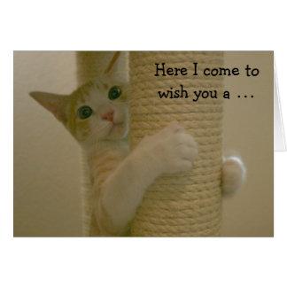 Lustige Geburtstags-Karte mit kletternder Katze Grußkarte