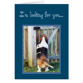 Lustige Geburtstags-Karte w/Cute Basset Hound u. Karte