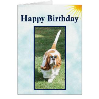 Lustige Geburtstags-Karte w/Cute ein Sonnenbad Karte