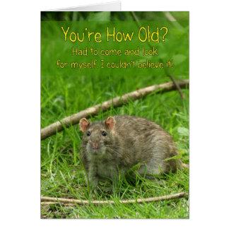 Lustige Geburtstags-Karte - wilde Brown-Ratte Grußkarte