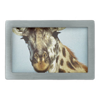 lustige Giraffe Rechteckige Gürtelschnalle