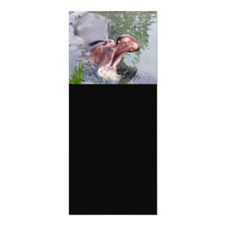 Lustige Hippopotamus-Fotografie 10,2 X 23,5 Cm Einladungskarte