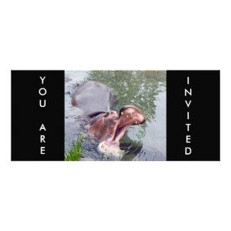 Lustige Hippopotamus-Fotografie Personalisierte Einladungskarten