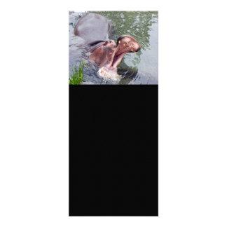 Lustige Hippopotamus-Fotografie Einladungskarten
