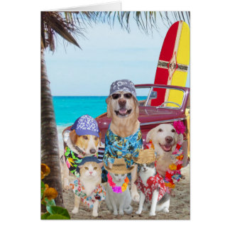 Lustige Hunde/Katzen-Hawaiianer-/Surfer-Geburtstag Karte