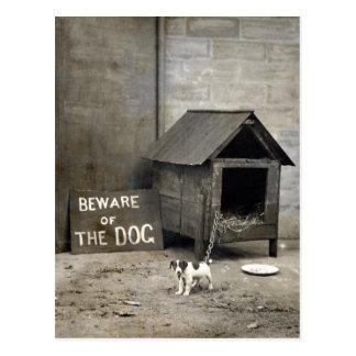 Lustige Hundpostards Postkarte