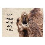 Lustige Kamel-Buckel-Tagesgeburtstags-Karte