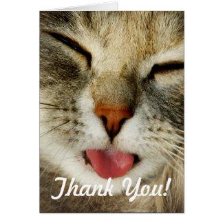 Lustige Katze danken Ihnen zu kardieren Karte