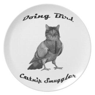lustige Katze, die Vogel tut Teller