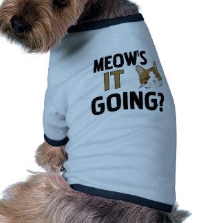 Lustige Katze/Haustier Hundebekleidung