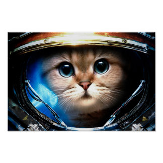Lustige Katze im Raum-Sturzhelm-Plakat Poster