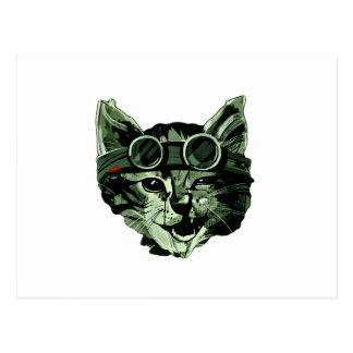 Lustige Katze mit Gläsern Postkarte