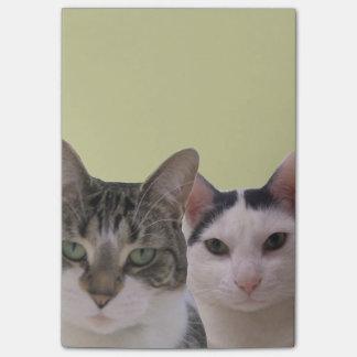 Lustige Katzen-Gruppe Post-it Klebezettel