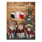 Lustige Katzen/Kätzchen Feliz Navidad Postkarte