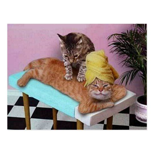 Lustige massage bilder