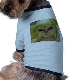 Lustige Katzen-Waren Hundebekleidung