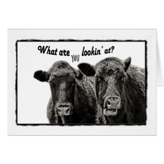 Lustige Kuh-Anmerkungs-Schwarzweiss-Karte Mitteilungskarte
