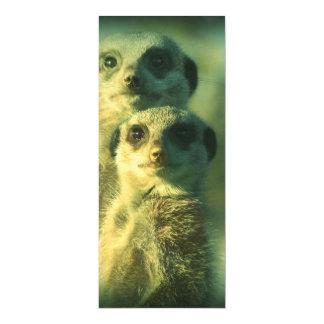 Lustige meerkats 10,2 x 23,5 cm einladungskarte
